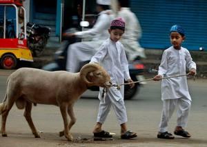 [Foto: niños y carnero.]