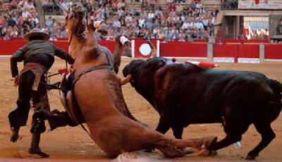toro_y_caballo.jpg